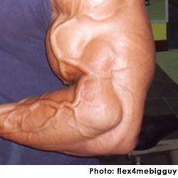 big vein Pulsating bicep picture